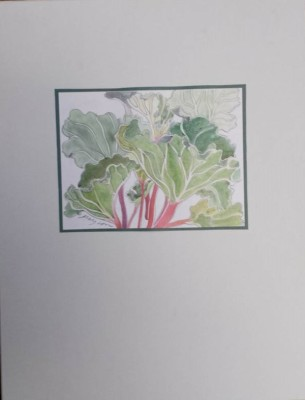 Rhubarb (matted painting)